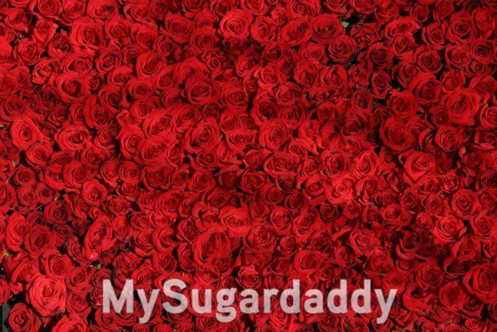 Sugardaddy verliebt sich